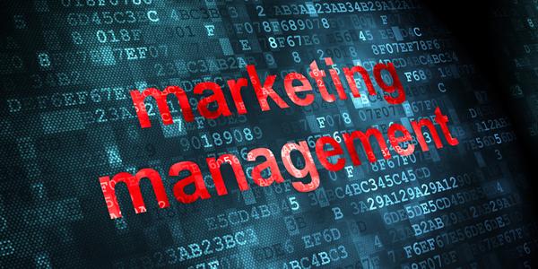 Markkinoinnin johtaminen määrittelee asiakaspolkustrategian, jonka avulla yritys yltää kasvutavoitteisiinsa.